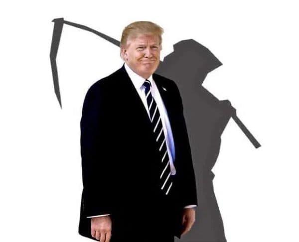 特朗普 Trump | 2020年美国总统大选